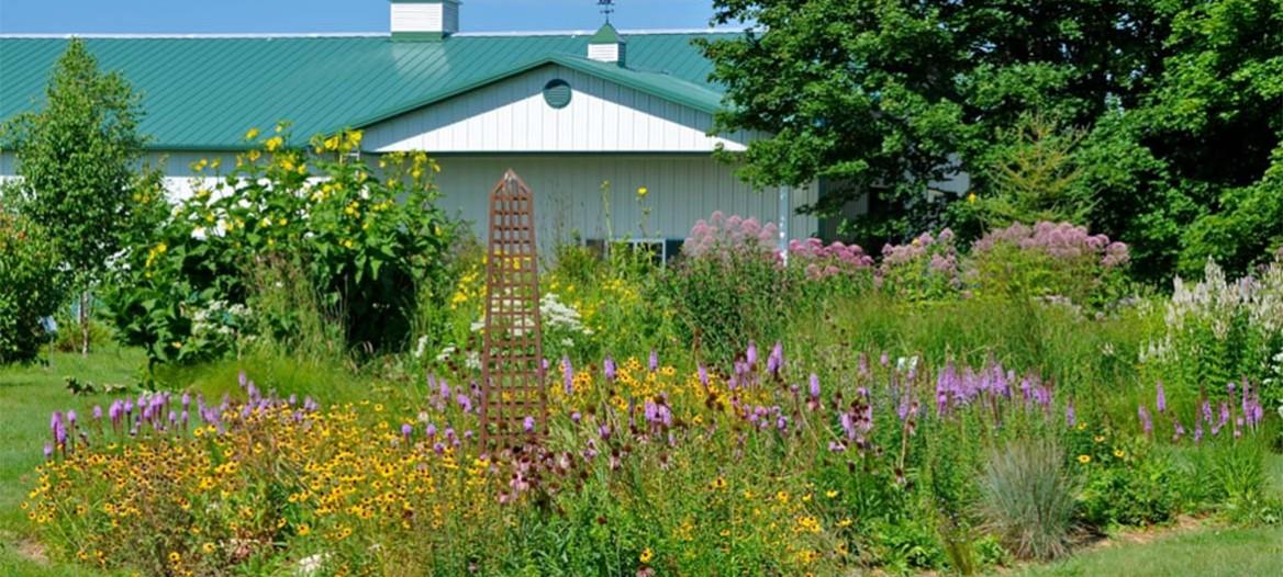 Landscape Care & Door Landscape Care u0026 Maintenance