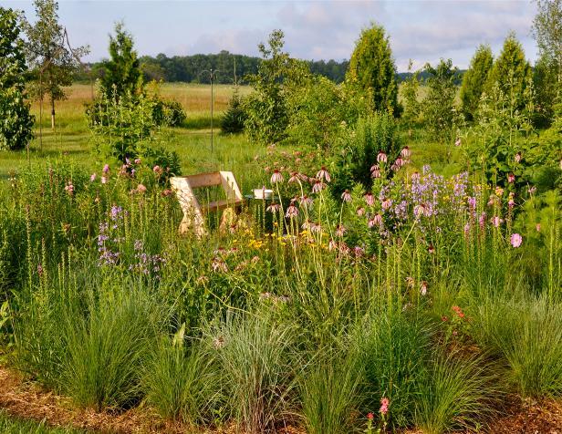 Monarch Haven in Summer at Door Landscape \u0026 Nursery & Door Landscape Native Plant Nursery
