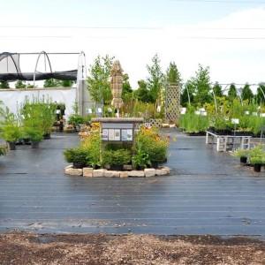 Retail Nursery Entrance & Door Landscape Native Plant Nursery